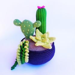 Patrón Maceta con cactus